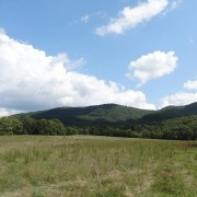 Peaceful 10 acre lot, Ellett Valley, Blacksburg VA